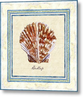Serene Shores - Scallop Shell Metal Print by Audrey Jeanne Roberts