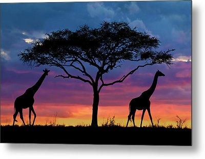 Serengeti Sunset Metal Print by Stu  Porter