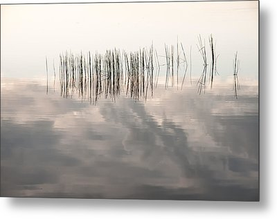 Serenity Dwells Here Where Tranquil Water Flow Cloaked  In Hues Of Love Metal Print by Jenny Rainbow