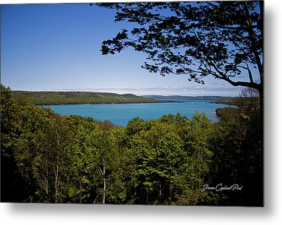 Metal Print featuring the photograph Serenity by Joann Copeland-Paul