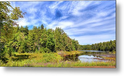 Metal Print featuring the photograph Serenity On Bald Mountain Pond by David Patterson