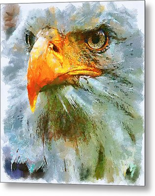 Serious Eagle Metal Print