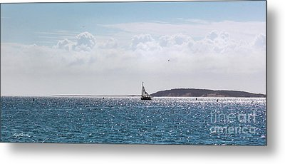 Metal Print featuring the photograph Setting Sail by Michelle Wiarda