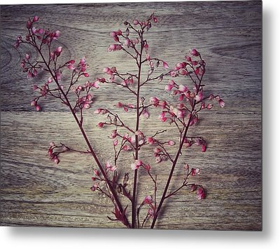 Shabby Chic Coral Bell Flowers Metal Print