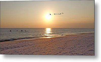 Shackleford Banks Sunset Metal Print by Betsy Knapp