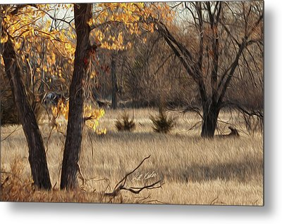 Shades Of Autumn Metal Print by Bill Kesler