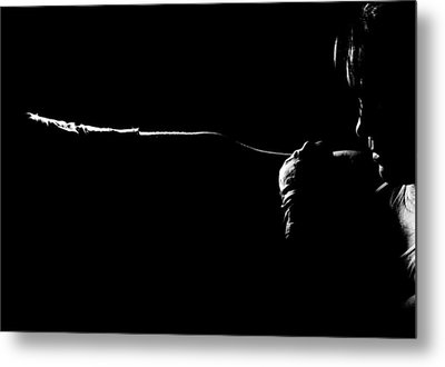 Shadow Boxing Metal Print by Scott Sawyer