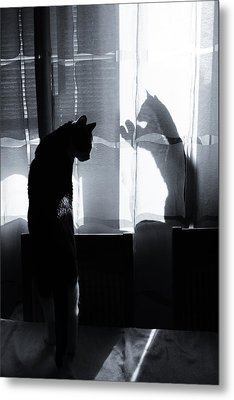Shadow Cats Metal Print