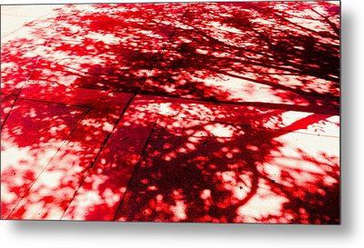 Shadow Of A Tree Metal Print