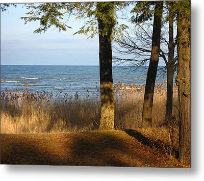 Shadows Over Huron Metal Print by Sheryl Burns