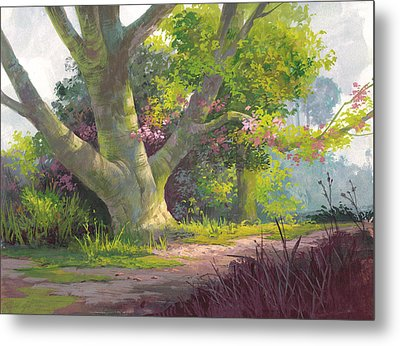 Shady Oasis Metal Print by Michael Humphries