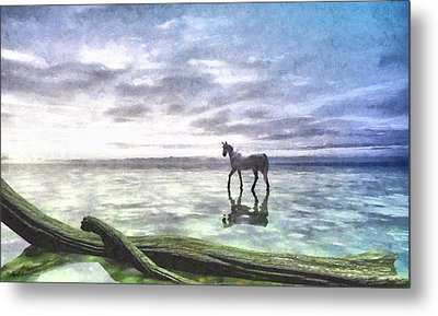 Shallows Painted Metal Print
