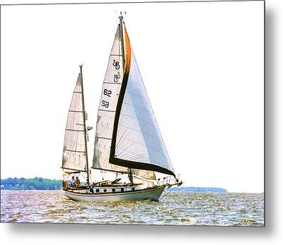 Shannon 38 Kittiwake On Chesapeake Bay Metal Print