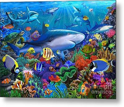 Shark Reef Metal Print by Gerald Newton