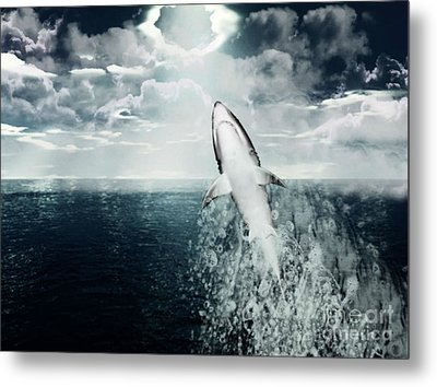 Shark Watch Metal Print by Digital Art Cafe