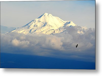 Shasta Near Sunset Metal Print by AJ Schibig