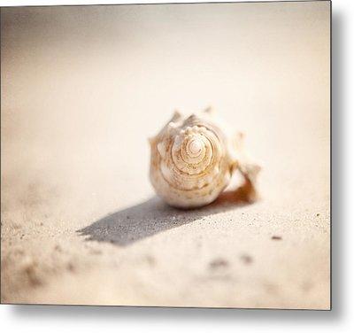 She Sells Sea Shells Metal Print by Lisa Russo