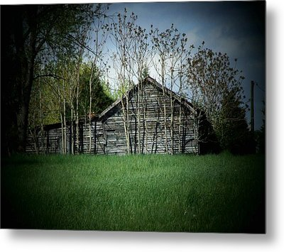 Shed And Trees Metal Print by Michael L Kimble