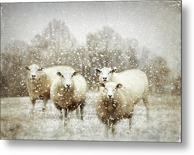 Metal Print featuring the photograph Sheep Gathering In Snow by Bellesouth Studio