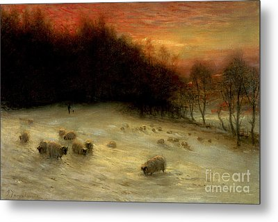 Sheep In A Winter Landscape Evening Metal Print by Joseph Farquharson