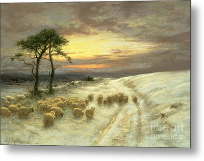 Sheep In The Snow Metal Print