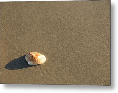 Shell And Waves Part 1 Metal Print by Alasdair Turner