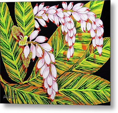 Shell Ginger Flowers Metal Print by Debbie Chamberlin