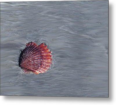 Shell Imprint Metal Print by Linda Sannuti