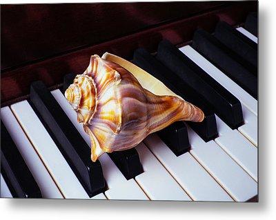 Shell On Piano Keys Metal Print