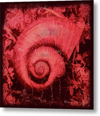 Shell Series 1 Metal Print by Marvin Spates