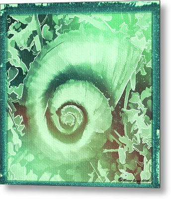 Shell Series 2 Metal Print by Marvin Spates