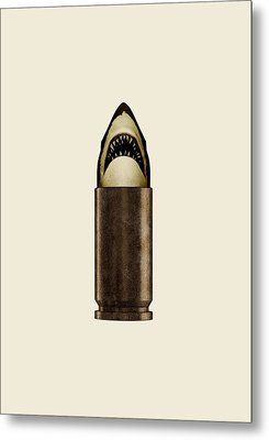Shell Shark Metal Print by Nicholas Ely
