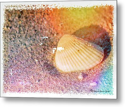 Metal Print featuring the photograph Shelling Out by Marvin Spates