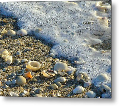 Shells And Seafoam Metal Print