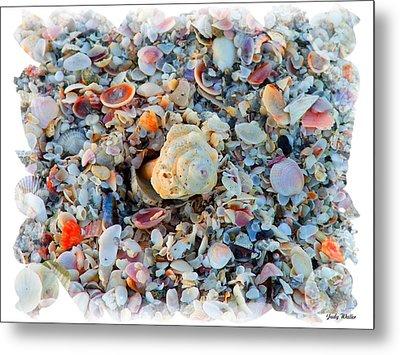 Shells Metal Print by Judy  Waller