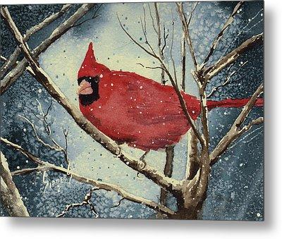 Shelly's Cardinal Metal Print by Sam Sidders