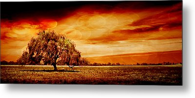 Shelter Metal Print by Az Jackson