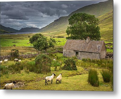 Shelter For Centuries Metal Print by Tim Bryan