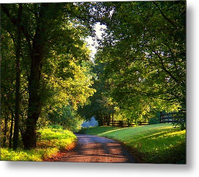 Shenandoah Summer Metal Print by Joyce Kimble Smith