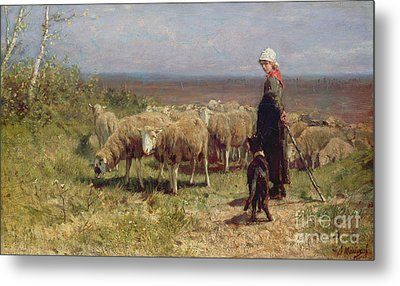 Shepherdess Metal Print