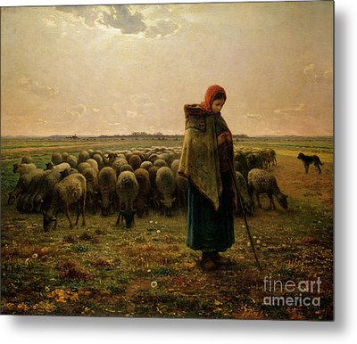Shepherdess With Her Flock Metal Print by Jean Francois Millet