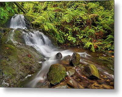 Shepperd's Dell Falls Metal Print by David Gn