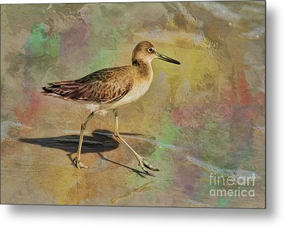 Metal Print featuring the painting Shore Bird Beauty by Deborah Benoit