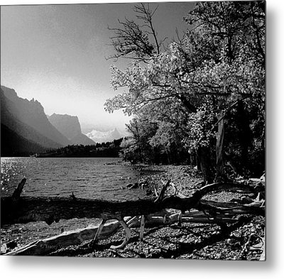 Shoreline Black And White Metal Print