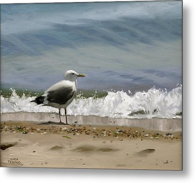 Shoreline Breeze Metal Print by Linda Tenukas