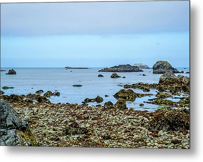 Shoreline Metal Print by Ric Schafer