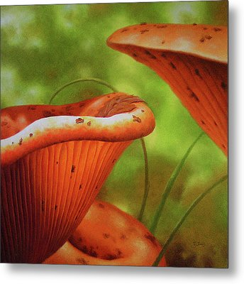Shortcut To Mushrooms Metal Print