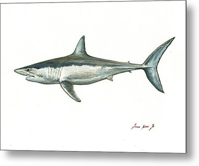 Shortfin Mako Shark Metal Print
