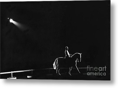 Show Horse Metal Print by Jim Wright