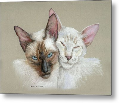 Siamese If You Please Metal Print